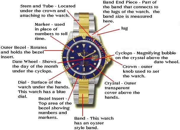 rolex Watch Diagram